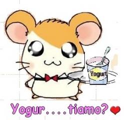yogut...tiamo.JPG
