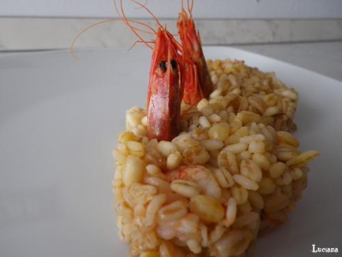 cerealotto-ai-gamberi-rosa11.jpg