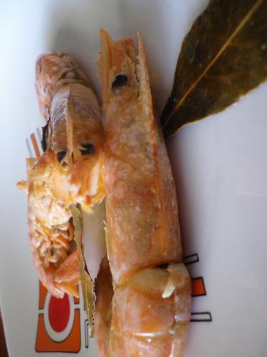 gamberi, secondi di pesce, crostacei