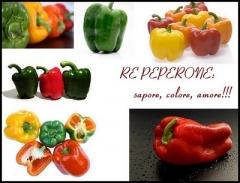 Pepper_2.JPG